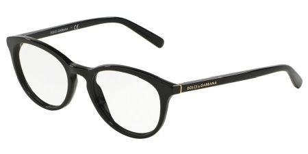 Dolce&Gabbana DG3223 501