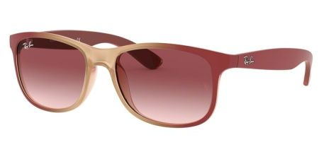 Ray-Ban RB4202 63698H ANDY